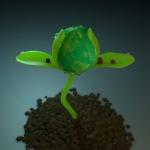 elysium green-062
