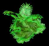 elysium green-065