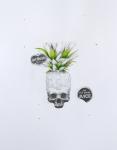 del-monte-2011-ludo-50x65cm-graphiteoil-on-paper, artwork,