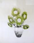 gunflowers-2011-ludo-130x100cm-graphiteoil-on-paper, artwork