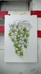 Grapes of Wrath, 2011, Ludo, 70x100cm, graphite/oil on paper, artwork,